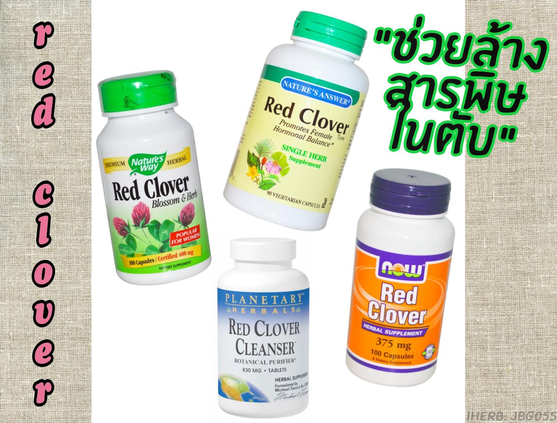 red-clover-เรดโคลเวอร์-ล้างพิษในตับ-รีวิวpantip