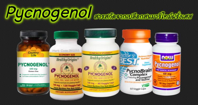 iHerb-pycnogenol-สารสกัดเปลือกสนฝรั่งเศส-pantip